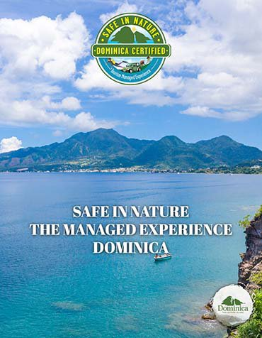 safe in nature managed experience cover
