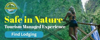 Safe In Nature Banner